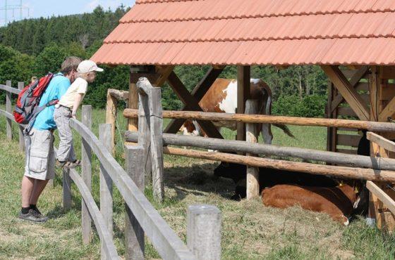 Farma Blanik, Louňovice