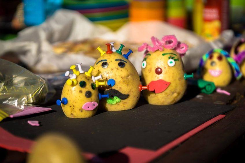 Dzień Pieczonego Ziemniaka, czyli tradycyjne jesienne ognisko TramPOLiny (2017)